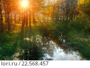 Купить «Осенний пейзаж на закате, пруд в лесу», фото № 22568457, снято 18 января 2019 г. (c) Зезелина Марина / Фотобанк Лори
