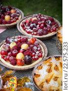 Пироги с фруктами и ягодами на столе (2015 год). Редакционное фото, фотограф Михаил Валеев / Фотобанк Лори