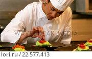 Купить «Chef garnishing plates», видеоролик № 22577413, снято 22 июля 2018 г. (c) Wavebreak Media / Фотобанк Лори