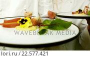 Купить «Chefs holding prepared plates», видеоролик № 22577421, снято 22 июля 2018 г. (c) Wavebreak Media / Фотобанк Лори