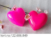 Два влюбленных сердца. Стоковое фото, фотограф Светлана Скрипник / Фотобанк Лори
