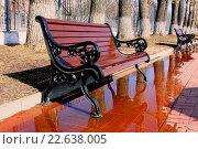 Скамейка на аллее весной. Стоковое фото, фотограф Georgmaxim / Фотобанк Лори