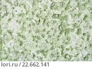 Крупным планом неровная поверхность камня с мелкими бороздками. Стоковое фото, фотограф Зезелина Марина / Фотобанк Лори