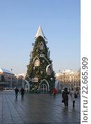 Купить «Рождественская елка на Кафедральной площади. Вильнюс», фото № 22665909, снято 5 января 2016 г. (c) Анна Менщикова / Фотобанк Лори
