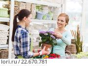Купить «happy women choosing flowers in greenhouse», фото № 22670781, снято 25 февраля 2015 г. (c) Syda Productions / Фотобанк Лори