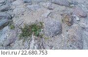 Купить «Каменный тротуар», видеоролик № 22680753, снято 22 апреля 2016 г. (c) Потийко Сергей / Фотобанк Лори