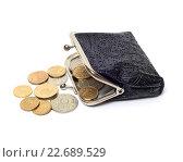Купить «Кошелёк с монетами», фото № 22689529, снято 25 апреля 2016 г. (c) Всеволод Карулин / Фотобанк Лори