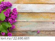 Купить «Цветы сирени на дощатом фоне», фото № 22690601, снято 20 сентября 2019 г. (c) Андрей С / Фотобанк Лори