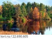 Купить «Осенний пейзаж с речкой и лесом», фото № 22690605, снято 25 сентября 2007 г. (c) Татьяна Белова / Фотобанк Лори