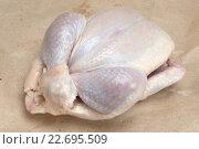 Купить «Сырая тушка цыпленка бройлера», фото № 22695509, снято 23 апреля 2016 г. (c) Леонид Штандель / Фотобанк Лори