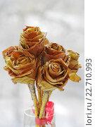 Букет декоративных роз из желтых сухих листьев. Стоковое фото, фотограф Наталья Чумакова / Фотобанк Лори