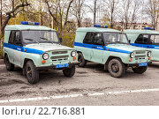Russian police patrol vehicles parked on the city street  in spring day, фото № 22716881, снято 30 апреля 2016 г. (c) FotograFF / Фотобанк Лори