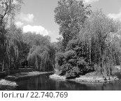 В парке Ивано-Франковска. Стоковое фото, фотограф Андрей  Васильевич  Коляскин / Фотобанк Лори