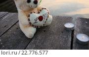 Купить «Свечи и медведь на берегу озера», видеоролик № 22776577, снято 23 апреля 2016 г. (c) Vitalii Popov / Фотобанк Лори