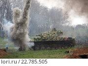 Взрыв возле тигра (2015 год). Редакционное фото, фотограф Юдин Владимир / Фотобанк Лори