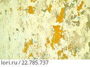 Купить «Шелушащаяся краска и штукатурка на поверхности стены», фото № 22785737, снято 3 мая 2016 г. (c) Зезелина Марина / Фотобанк Лори