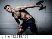 Купить «Athletic man doing exercises with dumbbells in The Gym's Studio», фото № 22818161, снято 23 ноября 2015 г. (c) Andrejs Pidjass / Фотобанк Лори