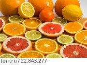 Купить «Цитрусовые фон с нарезанным апельсином, лимоном, лаймом, мандарином и грейпфрутом», фото № 22843277, снято 3 мая 2016 г. (c) Олег Жуков / Фотобанк Лори