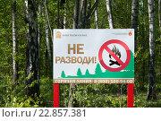 Знак запрещающий разводить огонь в лесу (2016 год). Редакционное фото, фотограф Илья Беспальчиков / Фотобанк Лори