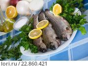 Купить «Close up view at sea eel fish ready for cooking», фото № 22860421, снято 30 марта 2020 г. (c) Яков Филимонов / Фотобанк Лори