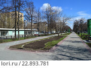 Купить «Сквер на Чонгарском бульваре. Район Зюзино. Москва», эксклюзивное фото № 22893781, снято 22 апреля 2015 г. (c) lana1501 / Фотобанк Лори