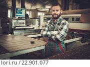 Купить «Carpenter works on wood plank in carpentry workshop.», фото № 22901077, снято 13 мая 2016 г. (c) Andrejs Pidjass / Фотобанк Лори