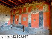 Купить «The Thermopolium of Vetutius Placidus, Pompeii, UNESCO World Heritage Site, the ancient Roman town near Naples, Campania, Italy, Europe», фото № 22903997, снято 26 февраля 2016 г. (c) age Fotostock / Фотобанк Лори