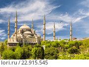 Голубая мечеть, Стамбул, Турция (2015 год). Стоковое фото, фотограф Наталья Волкова / Фотобанк Лори
