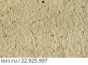 Бежевый фон - текстура декоративной цветной бумаги. Стоковое фото, фотограф Светлана Пасечная / Фотобанк Лори