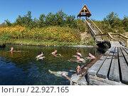 Купить «Туристы купаются в горячих источниках. Налычево, Камчатка», фото № 22927165, снято 7 сентября 2013 г. (c) А. А. Пирагис / Фотобанк Лори