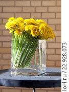 Одуванчики в вазе. Стоковое фото, фотограф Ольга Морозова / Фотобанк Лори