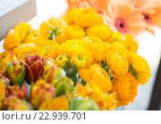 Купить «close up of beautiful ranunculus at flower shop», фото № 22939701, снято 27 марта 2016 г. (c) Syda Productions / Фотобанк Лори
