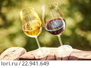 Купить «Glass of white and red whine», фото № 22941649, снято 22 сентября 2015 г. (c) Дмитрий Калиновский / Фотобанк Лори