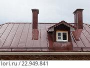 Купить «Мокрая крыша здания после дождя», иллюстрация № 22949841 (c) Anatoly Timofeev / Фотобанк Лори