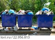 Переполненные мусорные контейнеры с твердыми бытовыми отходами в городе. Стоковое фото, фотограф Олеся Новицкая / Фотобанк Лори