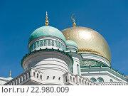Купить «Московская соборная мечеть в безоблачный день весной. Москва», фото № 22980009, снято 14 мая 2016 г. (c) Екатерина Овсянникова / Фотобанк Лори