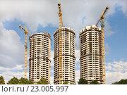 Купить «Панорама строительства», фото № 23005997, снято 28 мая 2016 г. (c) Victoria Demidova / Фотобанк Лори