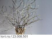 Весенний букет. Стоковое фото, фотограф Екатерина Давыдова / Фотобанк Лори