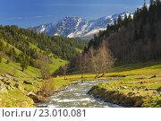 Купить «Вид на Кавказе», фото № 23010081, снято 22 мая 2016 г. (c) александр жарников / Фотобанк Лори