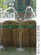 Купить «Селезень стоит на одной ноге в фонтане, Москва», фото № 23033869, снято 1 июня 2016 г. (c) Валерия Попова / Фотобанк Лори