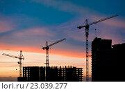 Купить «Силуэты строительных кранов и недостроенных жилых домов на фоне заката», фото № 23039277, снято 4 июня 2016 г. (c) E. O. / Фотобанк Лори