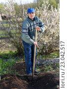 Купить «Мужчина вскапывает землю», фото № 23042517, снято 4 мая 2016 г. (c) Акиньшин Владимир / Фотобанк Лори