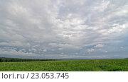 Купить «Timelapse облака над полем», видеоролик № 23053745, снято 8 июня 2016 г. (c) Сергей Эшметов / Фотобанк Лори
