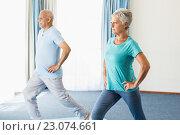 Купить «Seniors doing sport exercises», фото № 23074661, снято 2 марта 2016 г. (c) Wavebreak Media / Фотобанк Лори