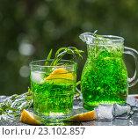 Освежающий лимонад с лимоном, мятой и эстрагоном. Стоковое фото, фотограф Виктория Панченко / Фотобанк Лори