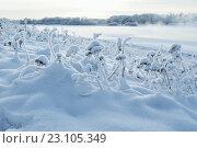 Зимний пейзаж. Стоковое фото, фотограф Зезелина Марина / Фотобанк Лори