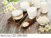 Молочные продукты и ромашки на столе. Стоковое фото, фотограф Надежда Мишкова / Фотобанк Лори