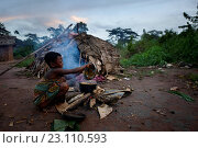 Life of Bayaka Pygmies in the equatorial rainforest, Central African Republic, Africa. Стоковое фото, фотограф Nicolas Marino / age Fotostock / Фотобанк Лори