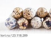 Купить «Перепелиные яйца на светлом деревянном фоне», фото № 23118289, снято 19 июня 2016 г. (c) Юлия Бочкарева / Фотобанк Лори