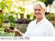 Купить «Smiling female scientist holding sapling», фото № 23130705, снято 11 мая 2016 г. (c) Wavebreak Media / Фотобанк Лори